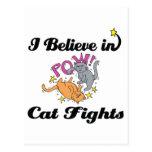 creo en peleas de gatos postal