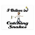 creo en serpientes de cogida tarjeta postal