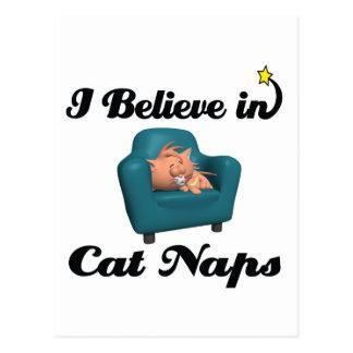 creo en siestas del gato tarjetas postales