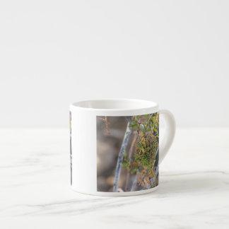 Creosote Gall Espresso Cup