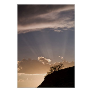Crepuscular rays radiate across the sky at poster