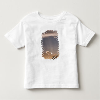 Crepuscular rays radiate across the sky at shirt