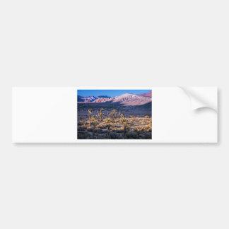 Crepúsculo escénico del barranco etiqueta de parachoque
