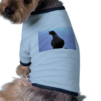 Crested Auklet Doggie T-shirt