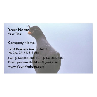 Crested Auklet Double-Sided Standard Business Cards (Pack Of 100)