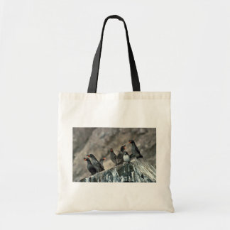 Crested Auklet Group on Cliff Rocks Tote Bags