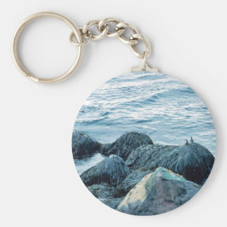 Crested Auklet Key Chain