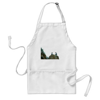 Crested Auklets Apron