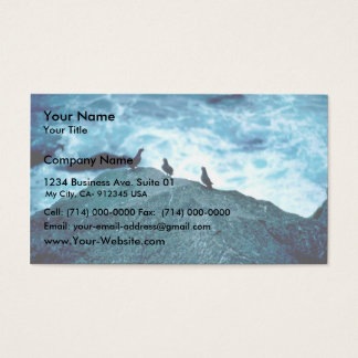 Crested Auklets Business Card