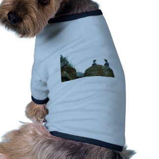 Crested Auklets Doggie T Shirt