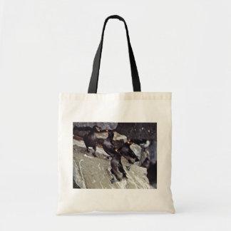 Crested auklets on rocks canvas bag