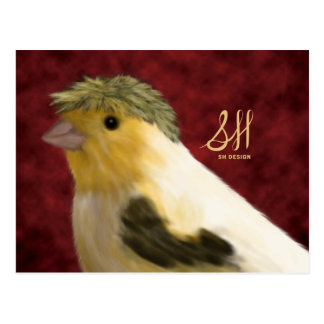 Crested Canary Postcard