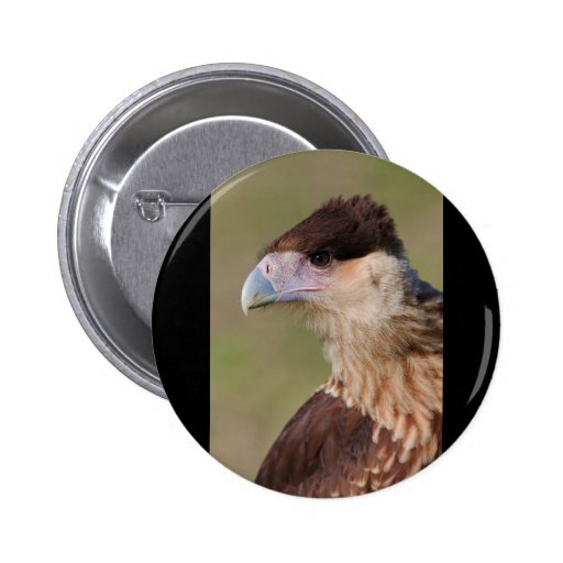 Crested Caracara 2 Inch Round Button