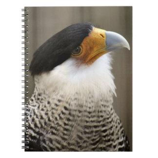 Crested Caracara Bird Spiral Photo Notebook