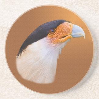 Crested Caracara  Coaster