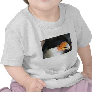 Crested caracara hawk head shot picture photo shirt