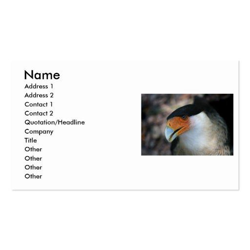 Crested Caracara hawk looking up at camera Business Card