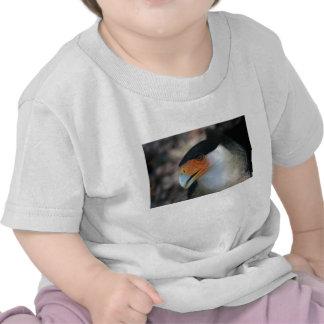Crested Caracara hawk looking up at camera Tee Shirts