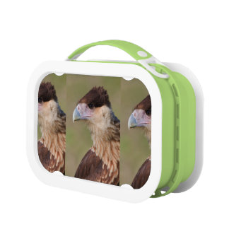 Crested Caracara Lunch Boxes