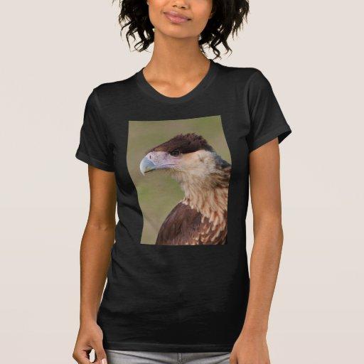 Crested Caracara Tee Shirt