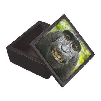 Crested Celebese Macaque Monkey Gift Box