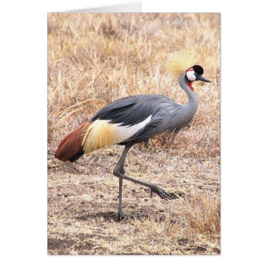 Crested Crane Card