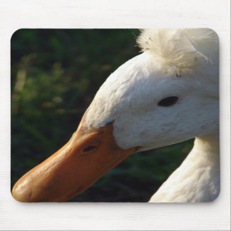 Crested Duck Mousepads