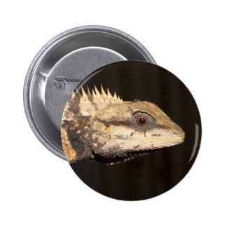 Crested forest lizard button