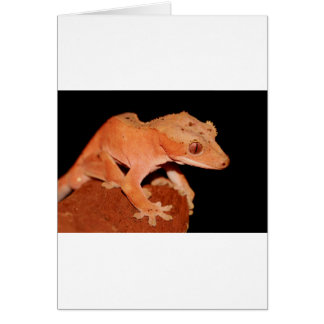crested gecko card
