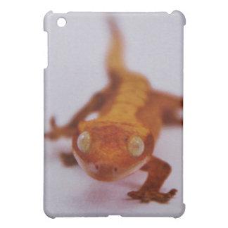 Crested Gecko Closeup Case For The iPad Mini