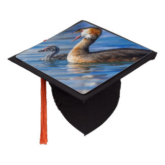 Crested grebe, podiceps cristatus, duck and baby graduation cap topper