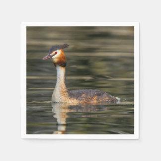 Crested grebe, podiceps cristatus, duck napkin