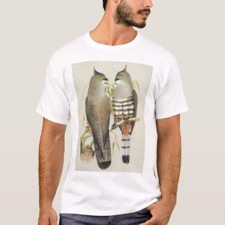 Crested Hawk - Aviceda subcristata T-Shirt