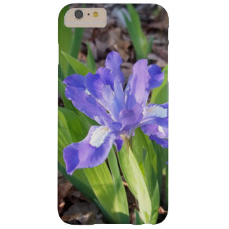 Crested Iris Barely There iPhone 6 Plus Case