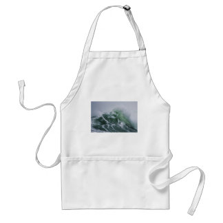 Cresting Storm Waves in the Pacific Adult Apron
