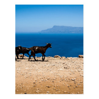 Creta 8 tarjeta postal