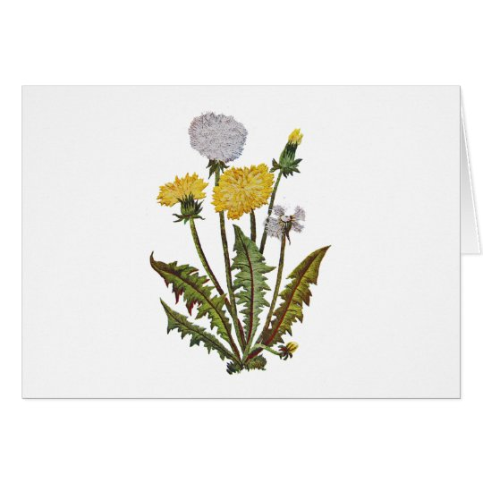 Crewel Embroidered Golden Dandy Lions Card