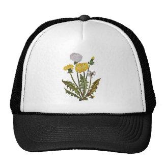 Crewel Embroidered Golden Dandy Lions Trucker Hat