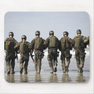 Crewman Qualification Training students Mouse Pad