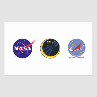 Crews to the ISS:  Expedition 16 Rectangular Stickers