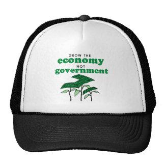 Crezca al gobierno de la economía no gorros