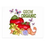 Crezca las postales orgánicas