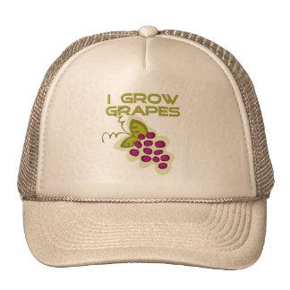 Crezco las camisetas y los regalos de las uvas gorra