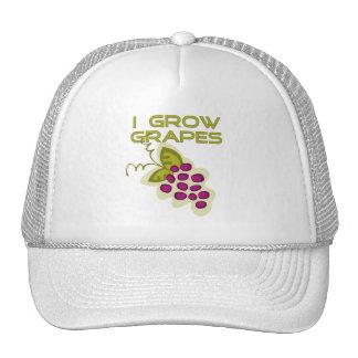 Crezco las camisetas y los regalos de las uvas gorro