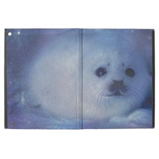 Cría de foca en el hielo - paisaje marino hermoso