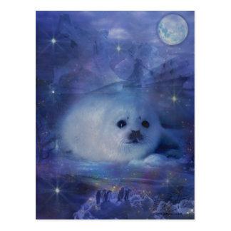 Cría de foca en el hielo - paisaje marino hermoso tarjetas postales