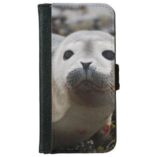 Cría de foca funda cartera para iPhone 6