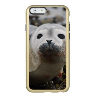 Cría de foca funda para iPhone 6 plus incipio feather shine