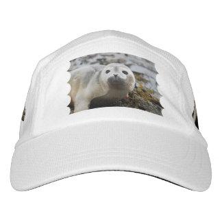 Cría de foca gorras de alto rendimiento