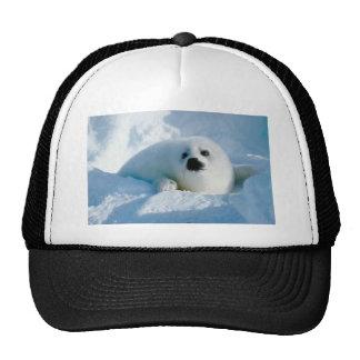 cría de foca gorros bordados